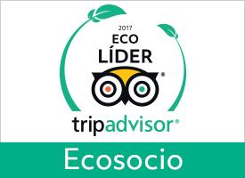 GreenLeader Partner